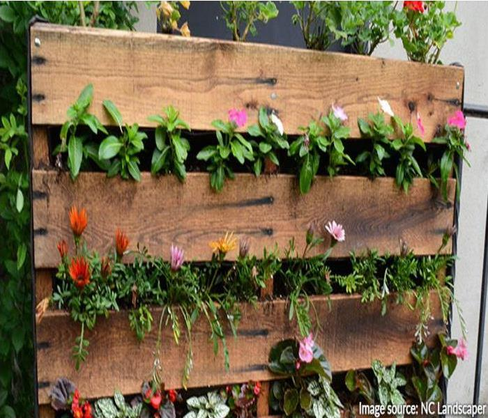 General DIY Home Garden Tips