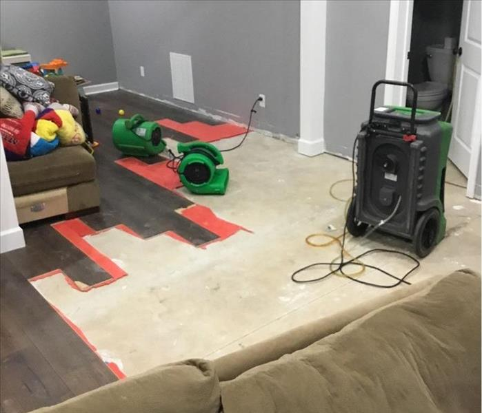 grey walls, tan couch, some brown hardwood floor planks, air movers